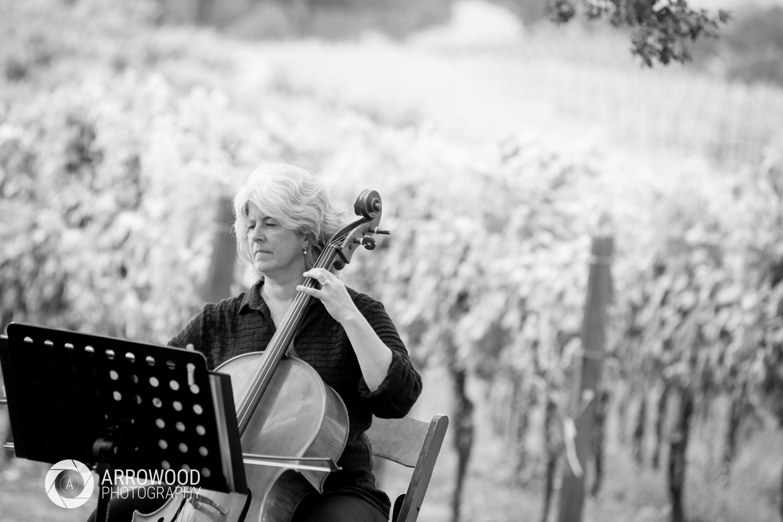 Cello Outdoor Wedding