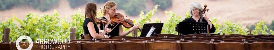 Garden Strings